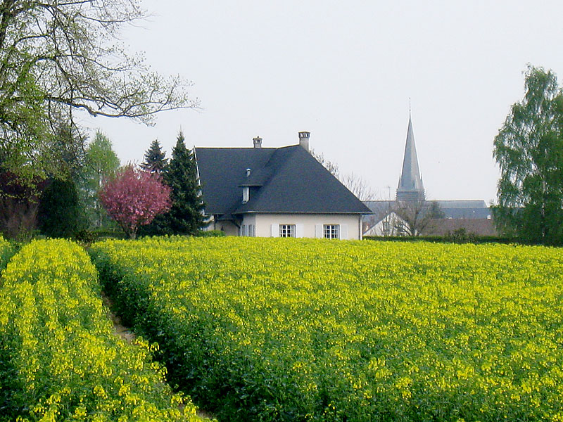 View of the church of Our Lady of Liesse (in Liesse, France), for whom De La Salle other had a devotion, from the approaching farmlands.