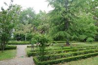 Garden of the Carmelite Abbey in Paris.